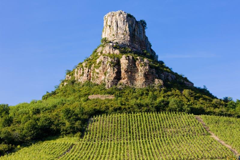 拉洛希与葡萄园的de Solutre,伯根地,法国 免版税库存照片