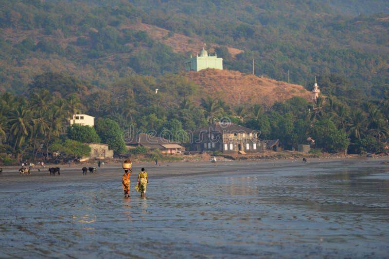 拉特纳吉里,马哈拉施特拉,印度,女渔翁1月2013年,夏尼跳船的 库存图片