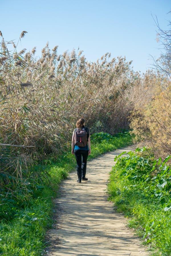 拉纳卡,塞浦路斯,欧洲- 1月 30日2018年,步行在公园的妇女 免版税库存照片