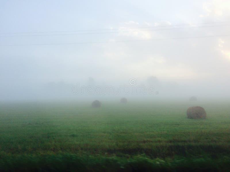 拉脱维亚乡下 库存图片