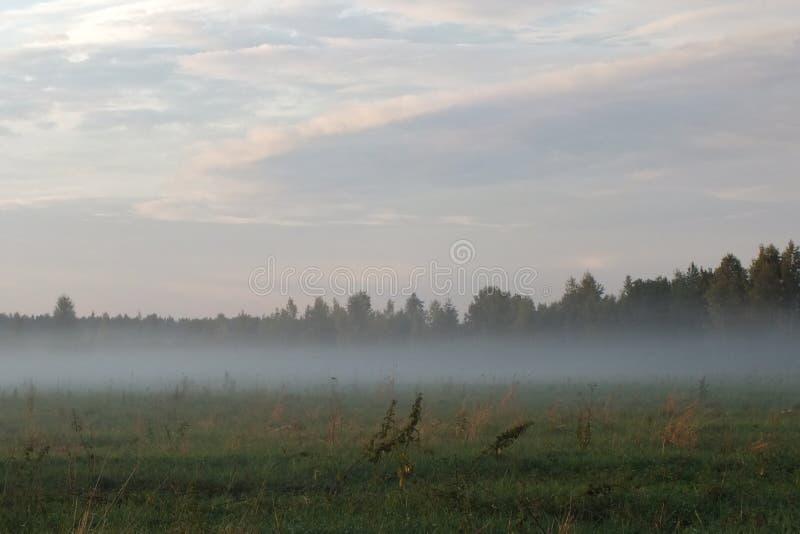 拉脱维亚卢巴纳领域太阳集合 库存照片
