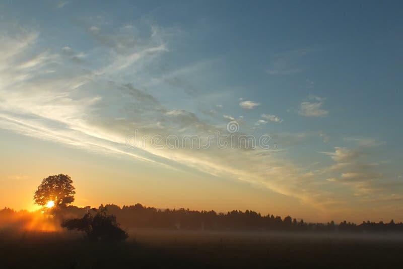 拉脱维亚卢巴纳领域太阳集合 库存图片