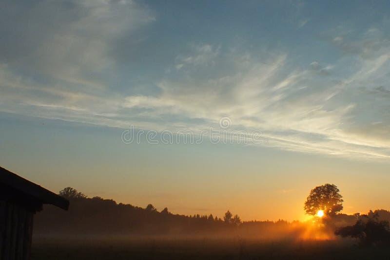 拉脱维亚卢巴纳领域太阳集合 免版税图库摄影
