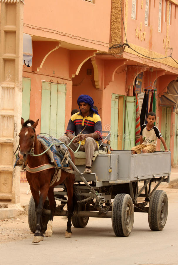拉货车的马运输 免版税库存照片