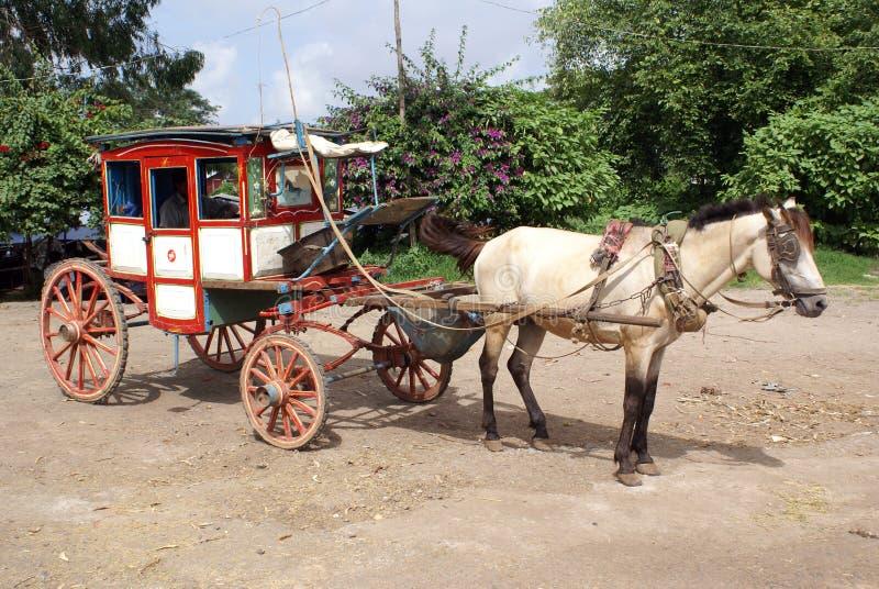 拉货车的马 免版税库存图片