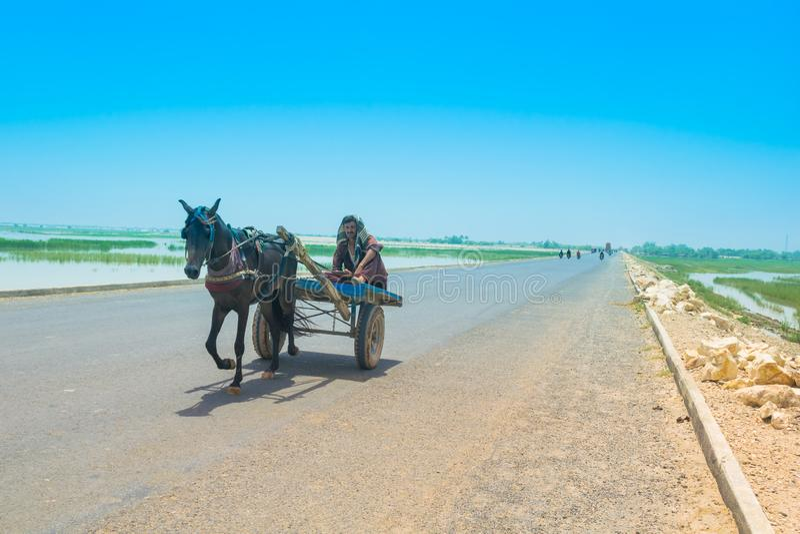 拉赫曼yar可汗,旁遮普邦,巴基斯坦6月23,2019:村民坐在一高途中的一个马推车 图库摄影