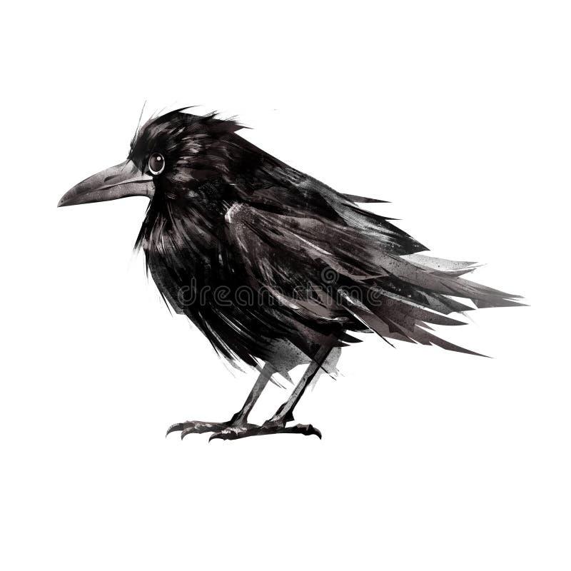 拉长的开会隔绝了在边的幼鸟乌鸦 库存例证