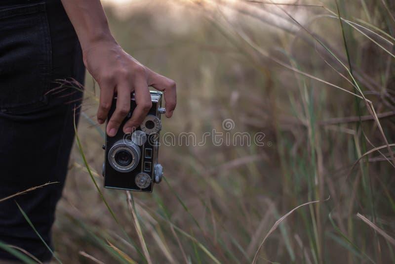 拍在鲜绿色的草甸的美女照片 免版税库存图片