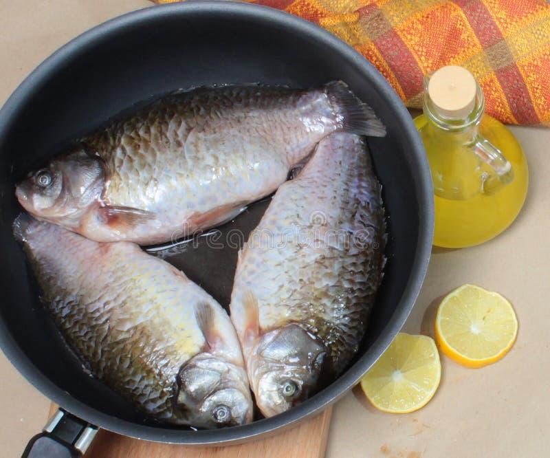 拍摄紧密,在煎锅的鲤鱼 免版税库存照片