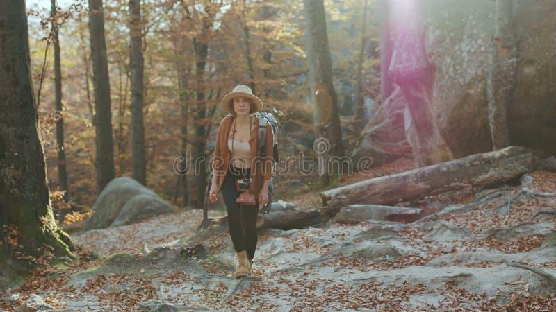 拍照片的旅行摄影师 夺取在她的数码相机的美女片刻 免版税库存照片