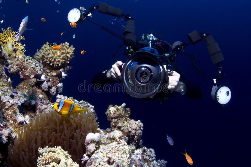 拍照片的水下的摄影师 免版税库存图片