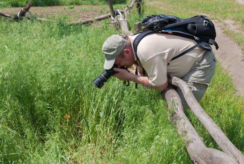 拍蝴蝶的照片摄影师 免版税库存图片
