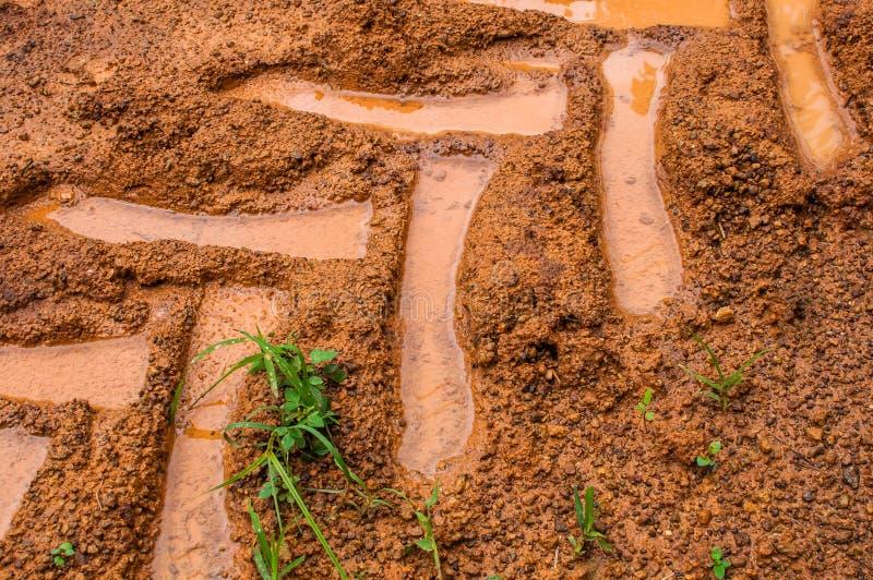 拖拉机在土壤的线索特写镜头 免版税库存照片