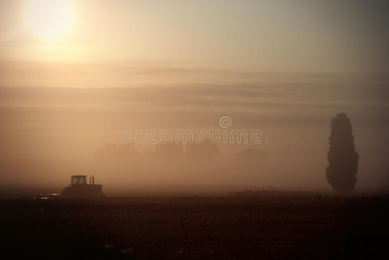 拖拉机在黎明 库存图片