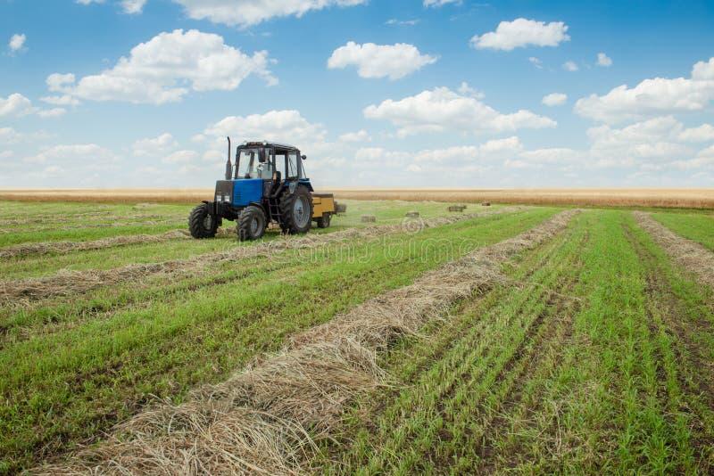 拖拉机收集在农田的干燥干草 免版税库存照片