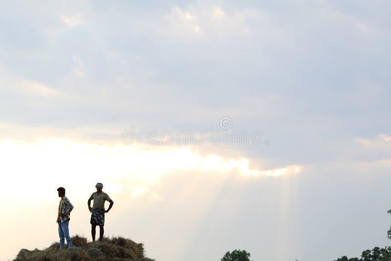 拖拉机的农夫 图库摄影