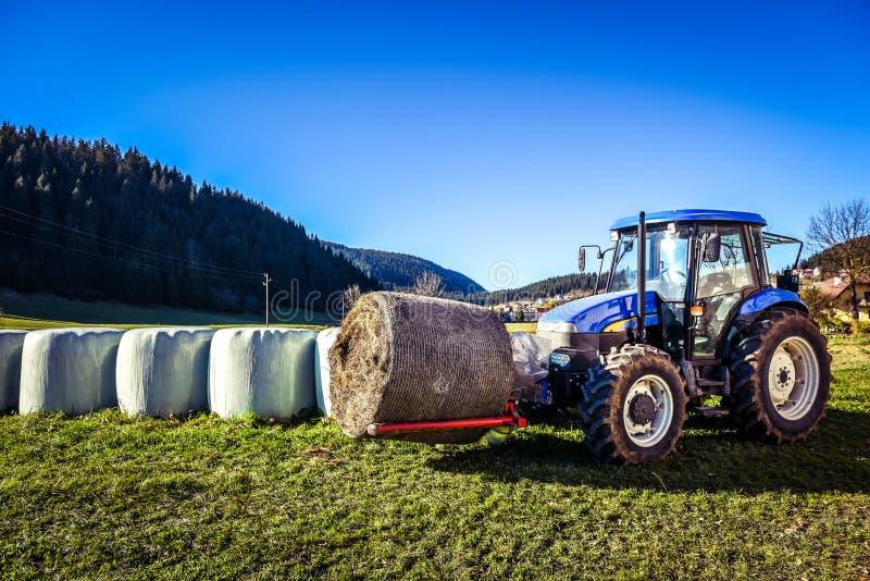 拖拉机运载的干草捆在堆滚动-堆积他们 图库摄影