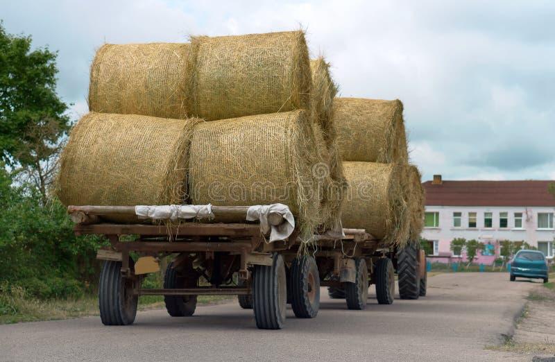 拖拉机运输扭转的捆干草,在农业机器的拖车的秸杆卷 免版税库存照片