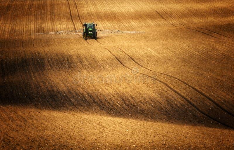 拖拉机,当喷洒调遣时玉米上升的地方 库存图片