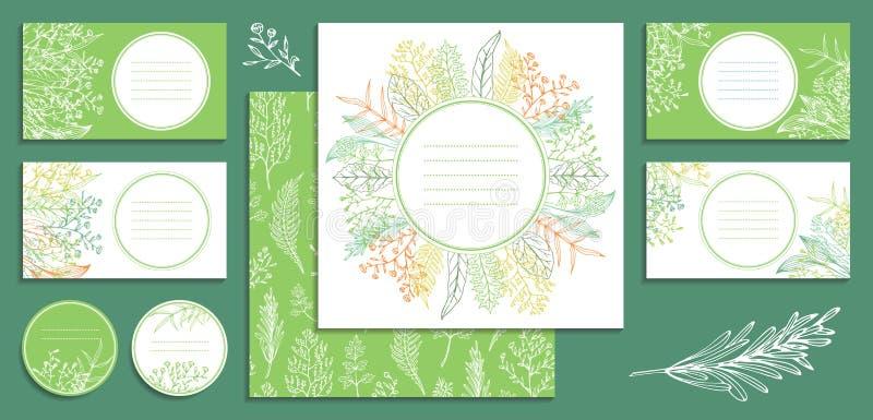 招呼的模板和名片、小册子、盖子、标签与野花,叶子和草本 库存例证