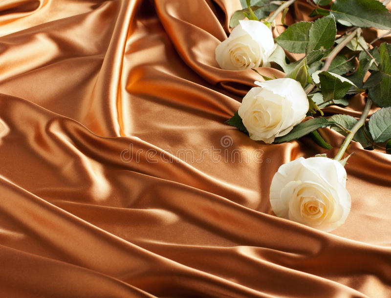 拟订金黄节假日玫瑰缎光白 图库摄影
