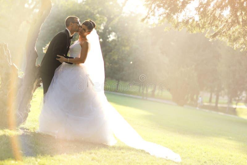 围拢由自然金黄阳光的新娘和新郎 免版税库存图片