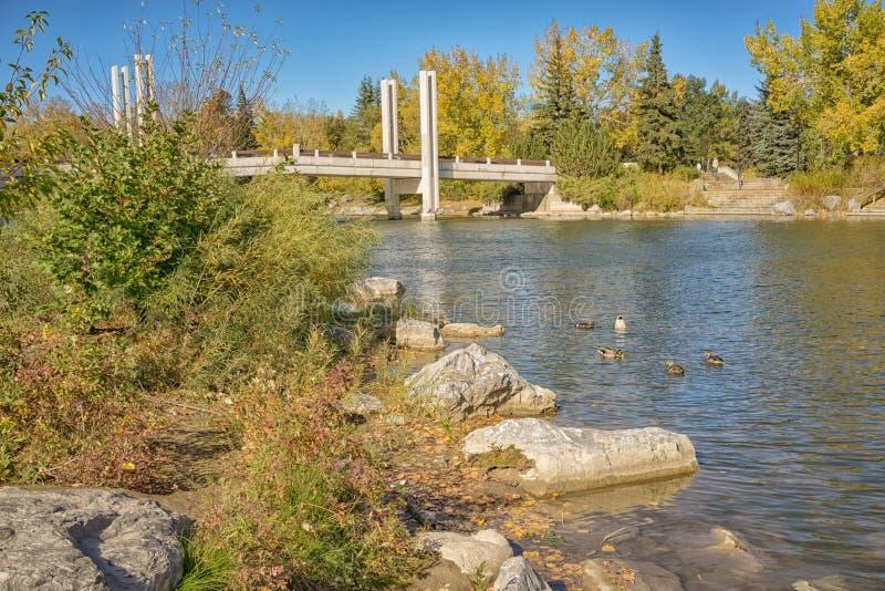 围拢Jaiper桥梁的秋天 库存照片