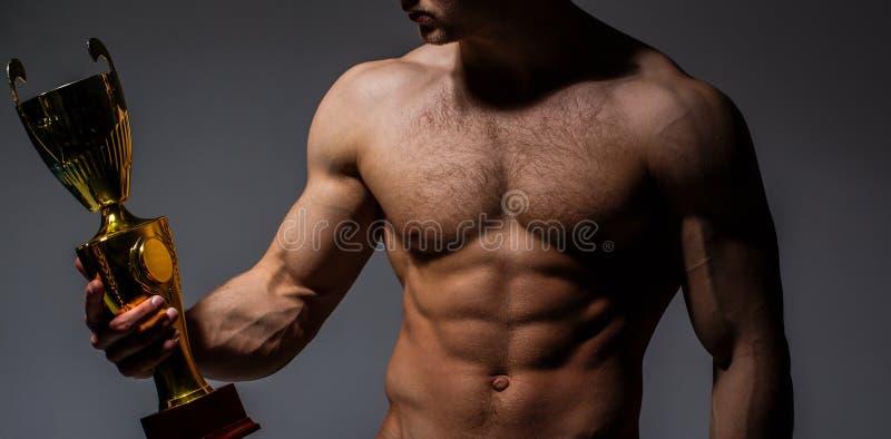 拥护` s杯子, ` s拿着金杯子的人 优胜者大力士,体育,专业冠军 肌肉人,赤裸的男性 库存照片