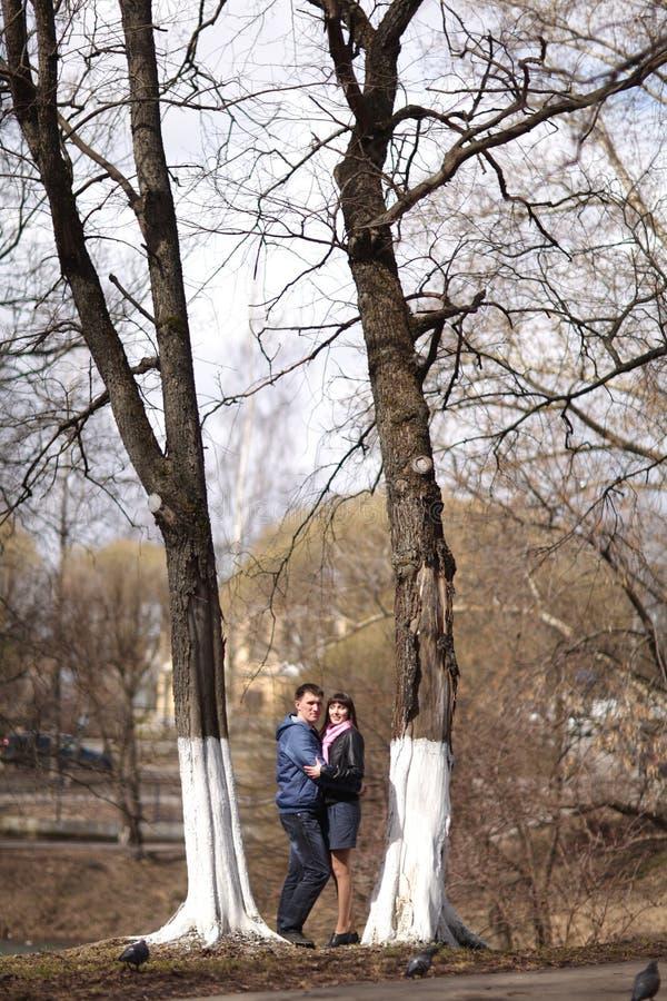 拥抱在公园的夫妇 库存照片