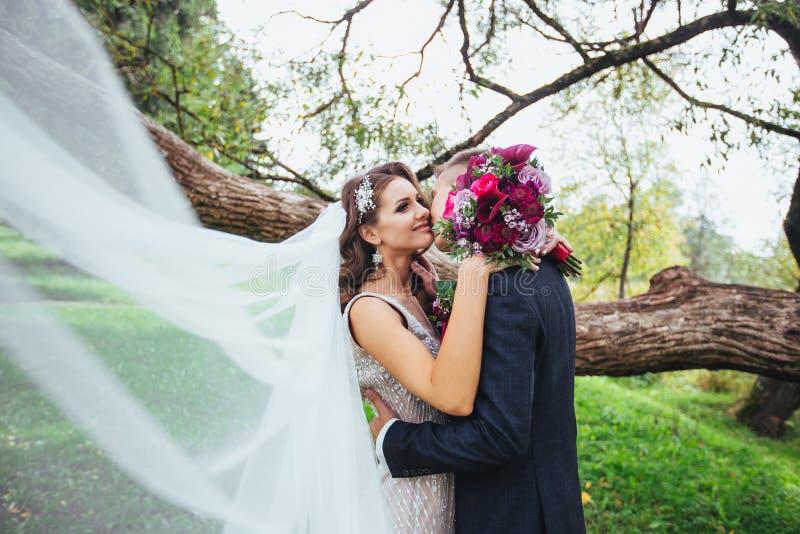拥抱在公园的新娘和新郎 库存照片