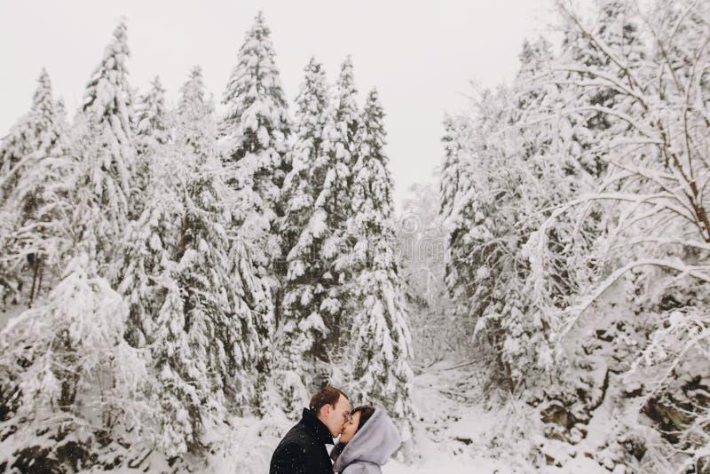 拥抱在冬天多雪的山的时髦的夫妇 愉快romant 免版税图库摄影