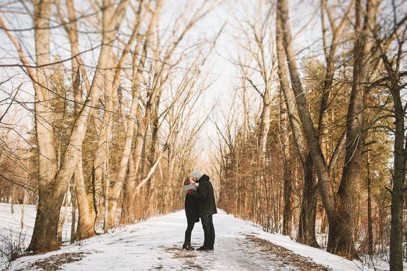 拥抱在冬天森林里的年轻行家夫妇 库存照片