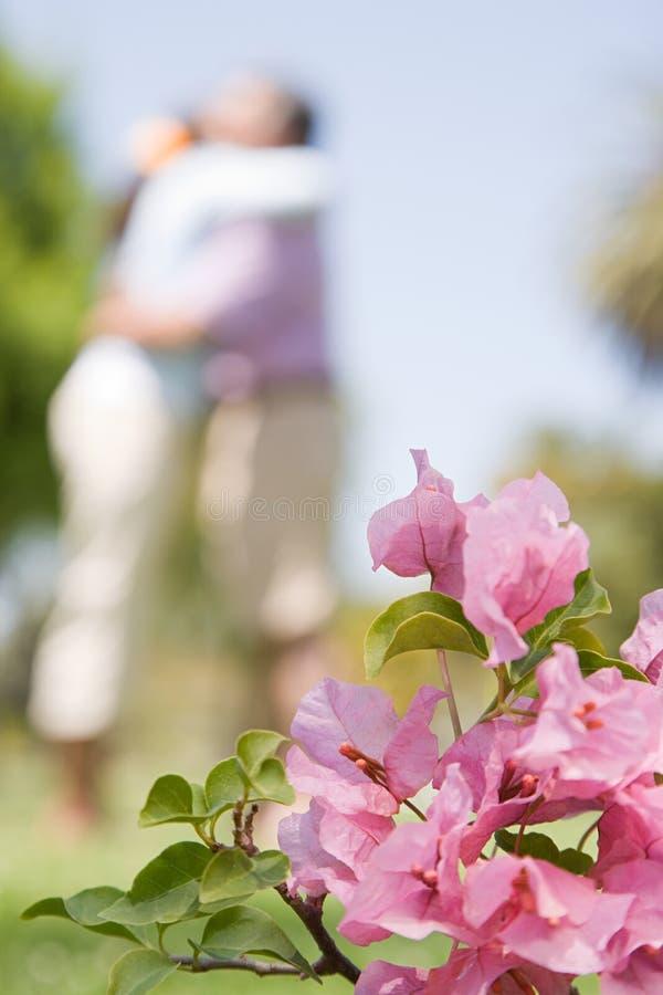 Download 拥抱在庭院里的两个人 库存照片. 图片 包括有 beautifuler, 外面, 节假日, 幸福, 健康 - 62533750