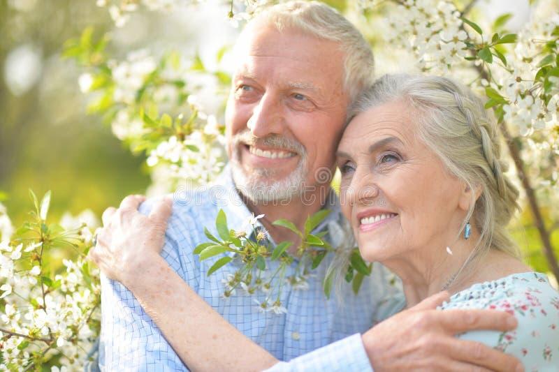 拥抱在开花的庭院里的夫妇 免版税库存照片