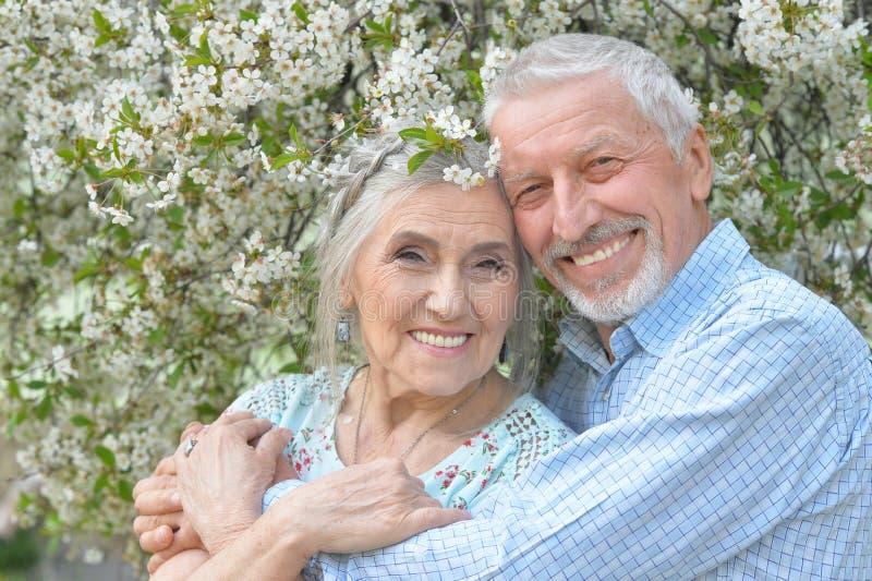 拥抱在开花的庭院里的夫妇 库存图片