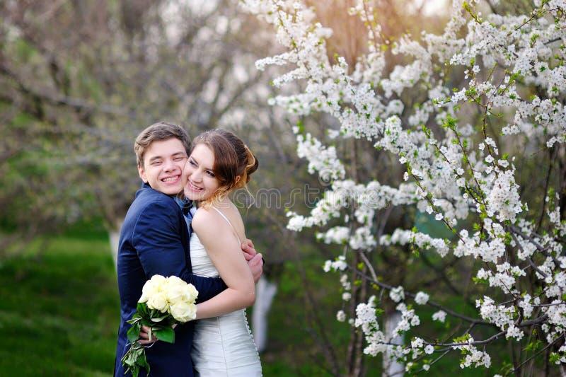 拥抱在开花的春天庭院婚礼的新娘和新郎走 免版税库存图片
