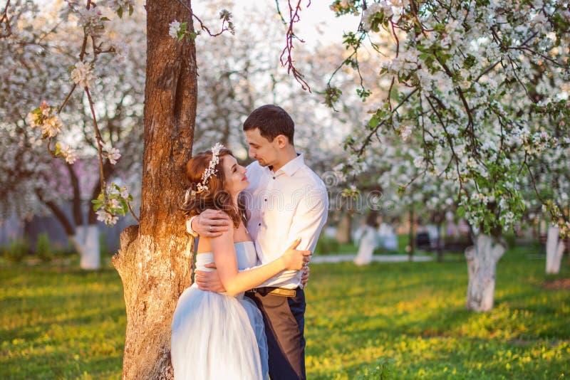 拥抱在日落的年轻夫妇在开花的春天从事园艺 爱和浪漫题材 免版税库存图片