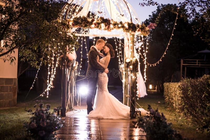 拥抱在有启发性眺望台的典雅的夫妇在晚上 库存照片