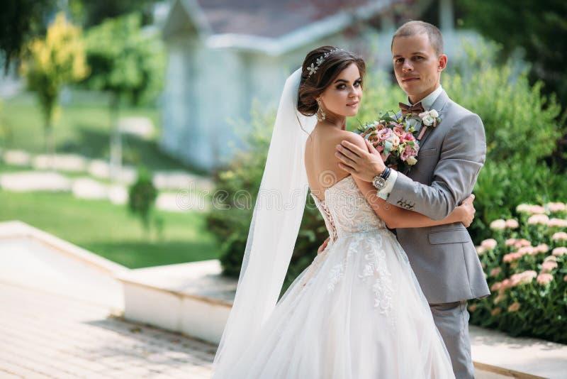拥抱在有绿色树的公园的美好的婚礼夫妇在背景 企业灰色衣服的新郎,在a的白色衬衣 免版税库存照片