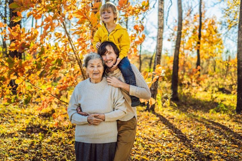 拥抱在秋天公园的祖母和成人孙子 免版税库存图片