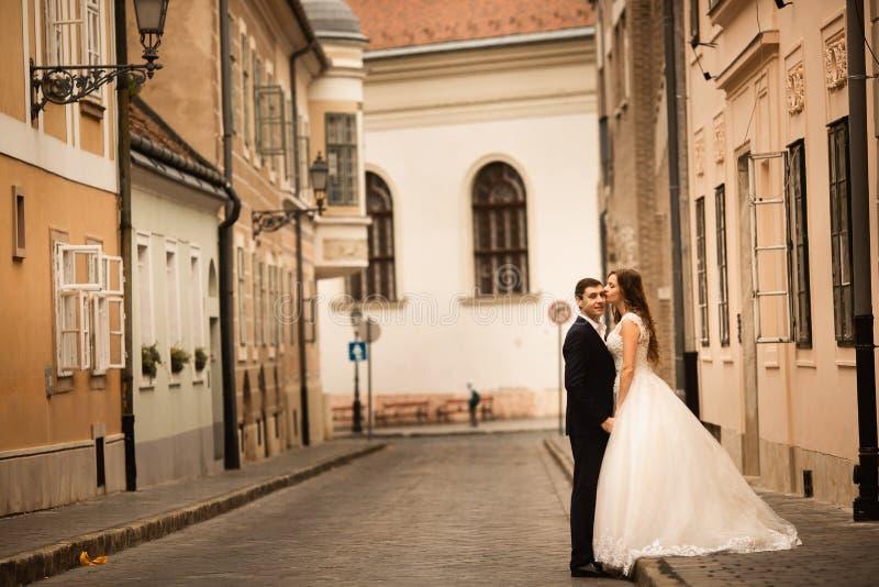 拥抱在老镇街道的新娘和新郎 在爱的Weding夫妇 除草在布达佩斯 库存照片
