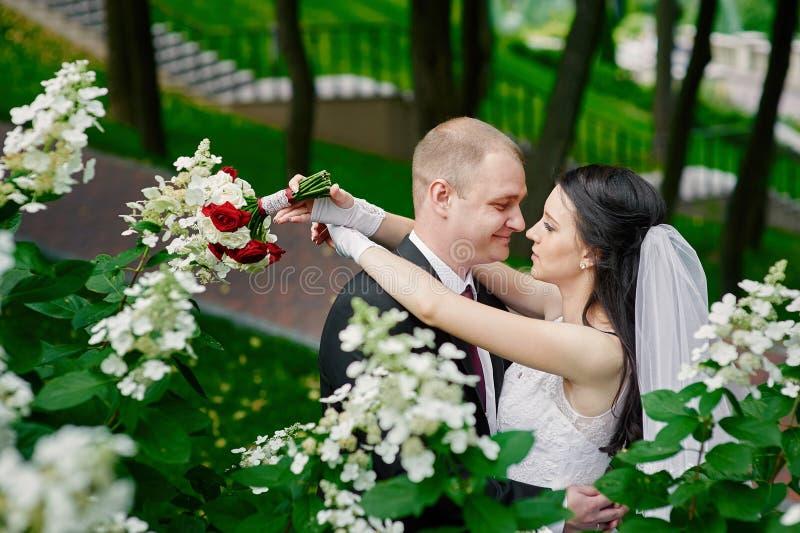 拥抱在背景花的公园的新娘和新郎 免版税库存照片