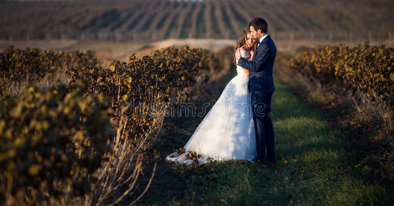 拥抱在藤的日落的新婚佳偶童话浪漫夫妇  免版税图库摄影