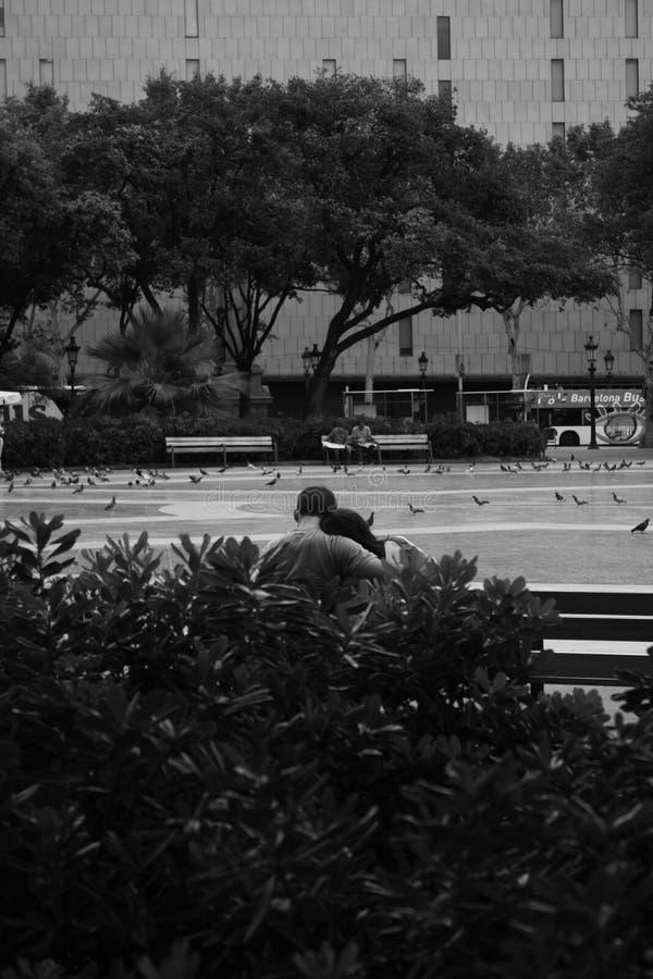 拥抱在长凳的夫妇 免版税图库摄影