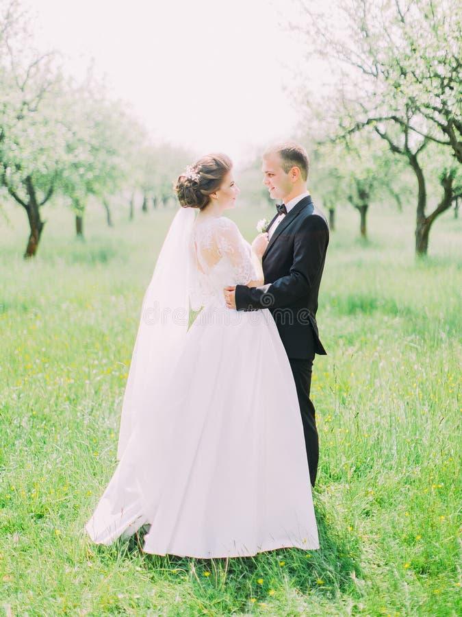 拥抱在领域的新婚佳偶的垂直的侧视图 库存照片