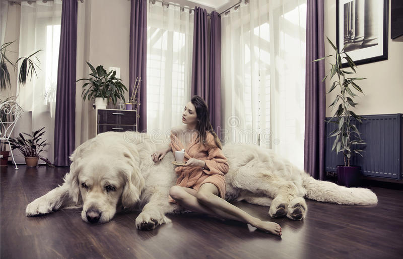 拥抱大狗的少妇 库存图片