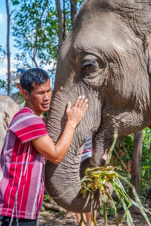 拥抱大象的Carrer 免版税库存图片