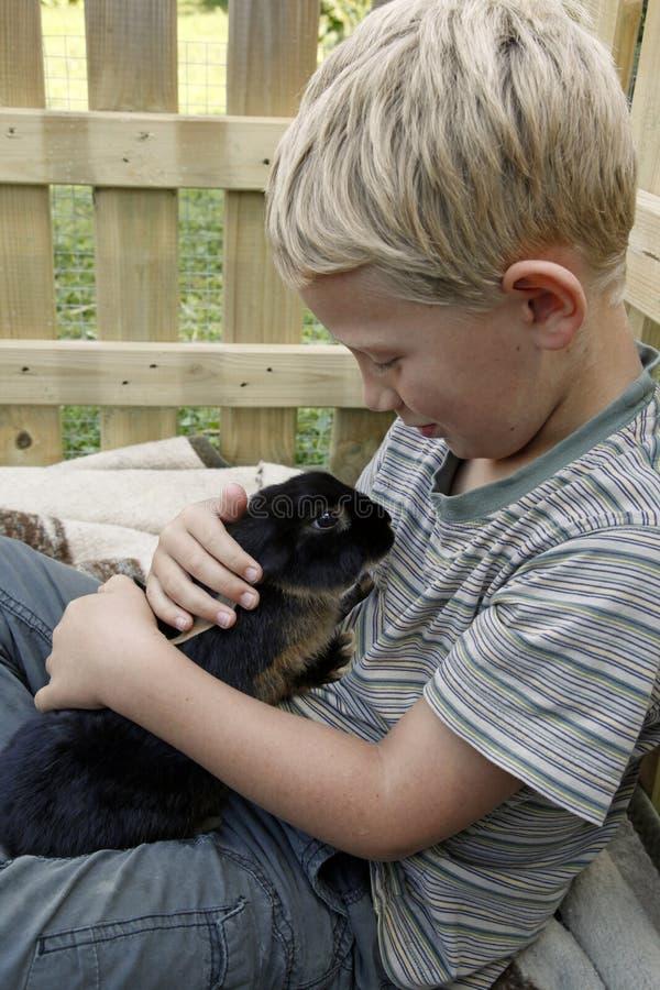 拥抱用宠物兔子的男孩 免版税图库摄影