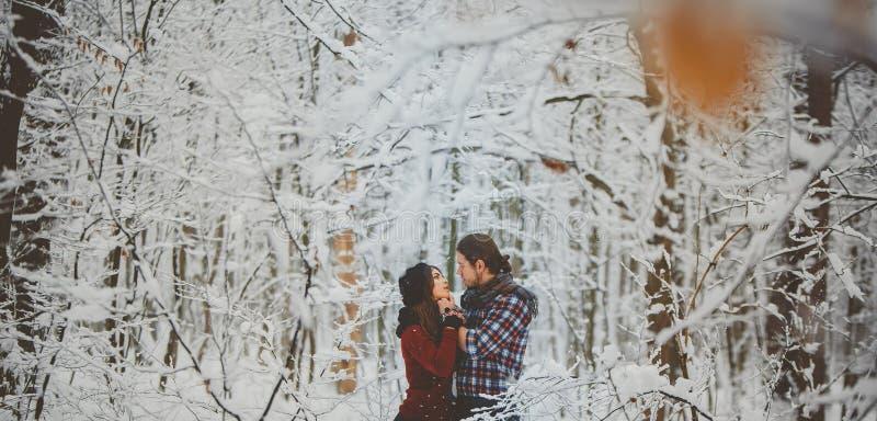 拥抱的夫妇在冬天森林里 图库摄影