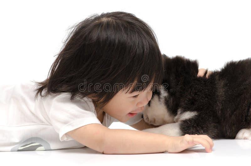 拥抱西伯利亚爱斯基摩人小狗的小亚裔婴孩 库存图片